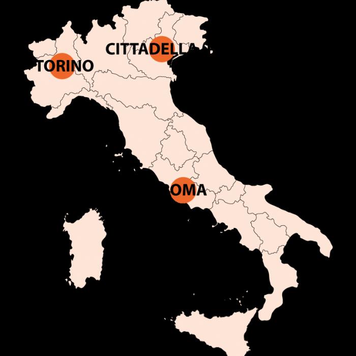 ALM Italia